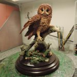 Country Artists Resin Tawny Owl On Log Figurine